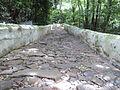 Convento da Penha, caminho de pedras.jpg