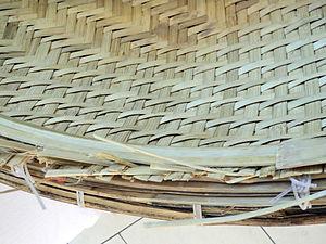 Coracle - Seedamm-Center 2012-06-11 15-47-10 (P7000).JPG