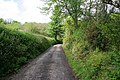 Cornish lane - geograph.org.uk - 434093.jpg