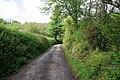 Cornish lane - geograph.org.uk - 434093.jpg