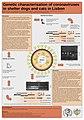 Coronaviruses poster ESVV09.jpg