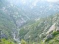 Corsica - Vivario-Vizzavona train - Vechiu valley - panoramio.jpg