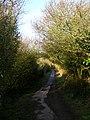 Cow Lane - geograph.org.uk - 670347.jpg