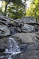 Cunningham Falls State Park - hand-stand - 3.JPG