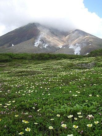 100 Soundscapes of Japan - Image: Daisetsu zan asahidake with flowers