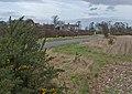 Dale Road, Riplingham - geograph.org.uk - 711873.jpg