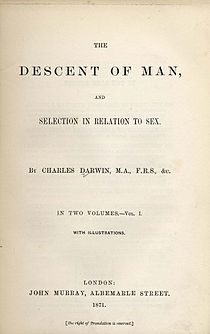 Framsida till förstautgåvan av The Descent of Man, and Selection in Relation to Sex