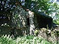 Derelict House, Bwa-drain farm - geograph.org.uk - 200085.jpg