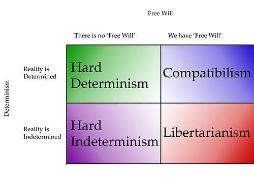 Determinism definition psychology