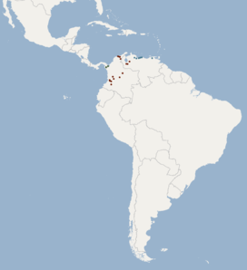 Distribution of Platyrrhinus umbratus.png