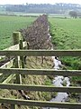 Ditch and Fence - geograph.org.uk - 329404.jpg