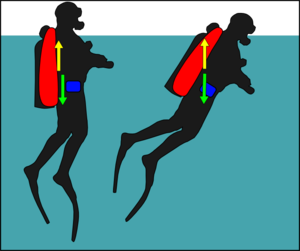 Diver trim - Diver with centre of buoyancy to the back will rotate forwards