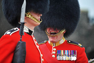 Drill instructor - A Drill Sergeant of the Scots Guards shouting orders to his troops