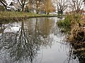 Duck pond at Histon Village Green - geograph.org.uk - 1727390.jpg