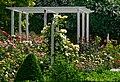 Duftende Schönheit, der Rosengarten im Kurpark Bad Mergentheim. 05.jpg