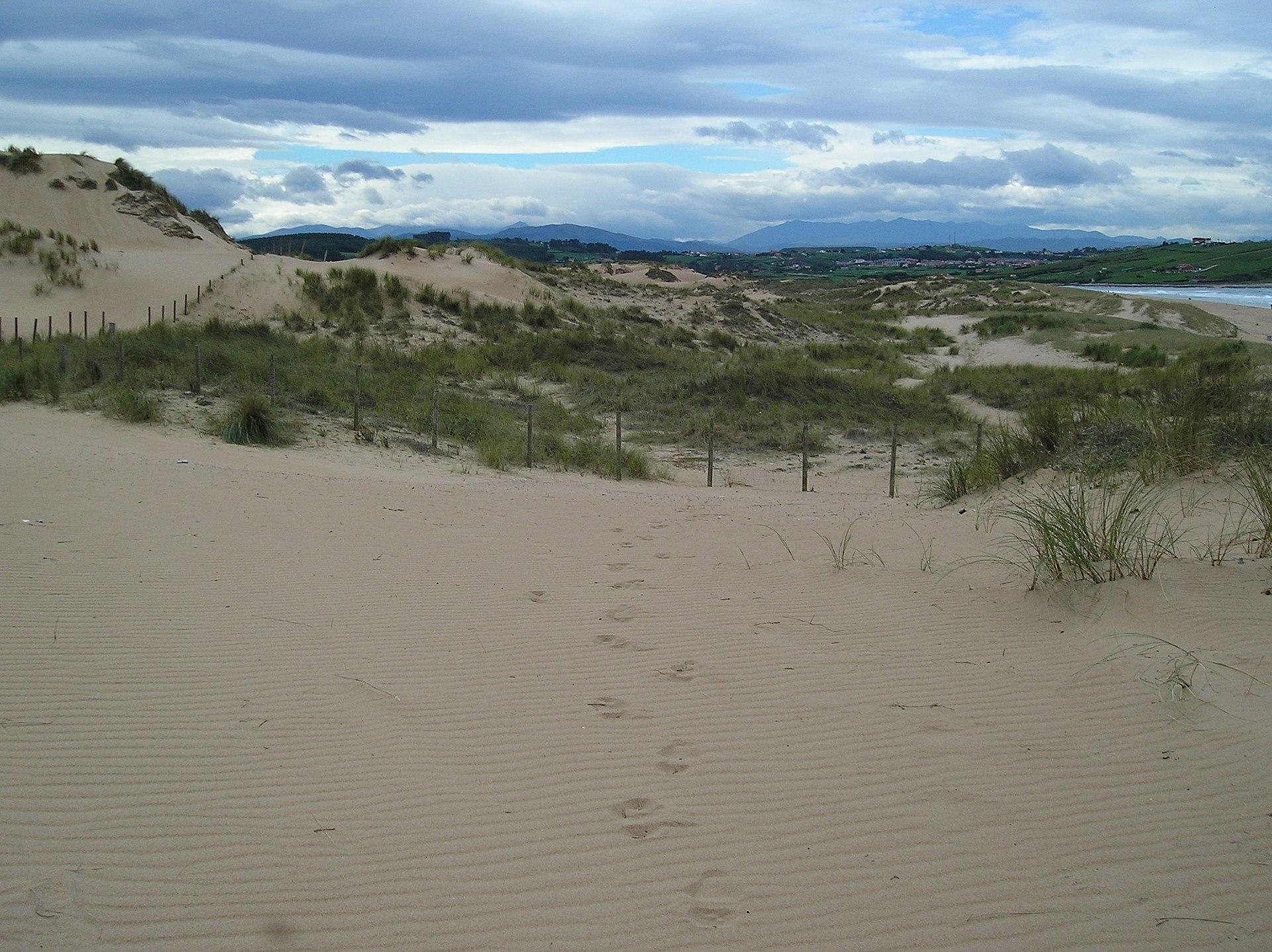 Parque natural de las dunas de liencres wikipedia la for Camping el jardin de las dunas