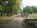 Early autumn tints in the cemetery - geograph.org.uk - 250907.jpg