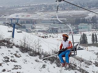 British ski jumper