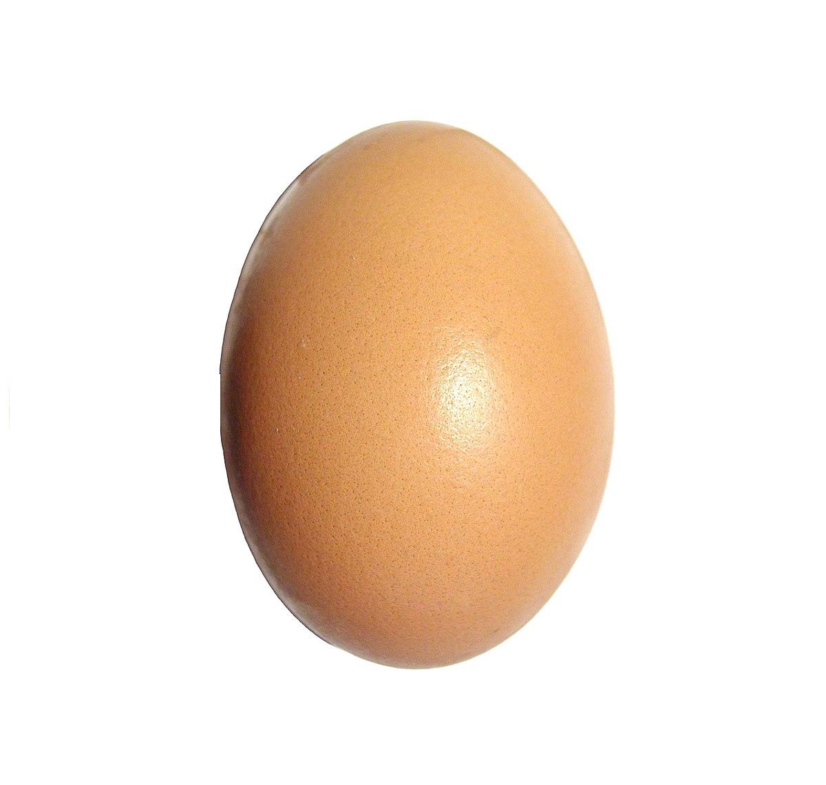 Egg upright.jpg