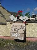 Eggs for sale, Ballybrack - geograph.org.uk - 1872430.jpg