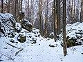 Eichig Felsenlabyrinth Winter-20210110-RM-151027.jpg