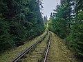 Eisenbahnlinie-Saalestauseen-8132390.jpg