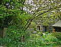 English Country Garden (2600578895).jpg