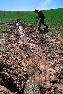 Промоины на пшеничном поле, США: ru.wikipedia.org/wiki/Эрозия_(геология)
