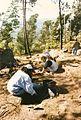 Escavações 1994 2.jpg