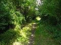 Etherley Railway Incline (Bridleway between Low Etherley and Greenfields).jpg