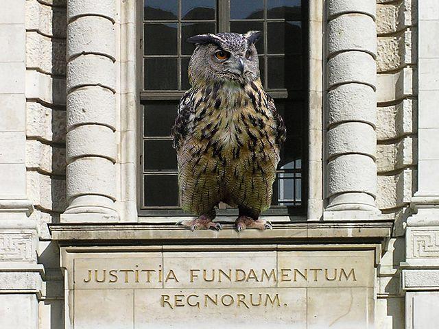 https://upload.wikimedia.org/wikipedia/commons/thumb/7/7b/Eule_Justitia.jpg/640px-Eule_Justitia.jpg