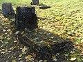 Evangelical Cemetery on Bystrzańska street in Bielsko-Biała (13).JPG