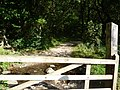 Exmoor , Gate and Path at Tarr Steps Woods - geograph.org.uk - 1507852.jpg