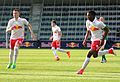 FC Liefering gegen SV Austria Lustenau(12. Mai 2017) 16.jpg