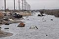 FEMA - 22161 - Photograph by Marvin Nauman taken on 01-26-2006 in Louisiana.jpg