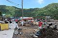FEMA - 42137 - Debris removal by residents in American Samoa.jpg