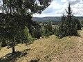 FR4301334 & FR4312013 - Zone Natura 2000 - pelouses sèches et prés de fauche de Charchilla - 2.JPG