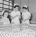 Fabriek voor schoonheidsproducten Helena Rubinstein in Nazareth Medewerksters b, Bestanddeelnr 255-4422.jpg
