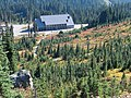 Fall color in meadow above JVC 2. Early September 2015. (a4ae49def51e4bbf845b14b4875c0689).JPG
