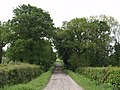 Farm road to Langabeare Barton - geograph.org.uk - 438953.jpg