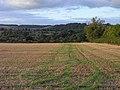 Farmland, Dowdeswell - geograph.org.uk - 1557773.jpg