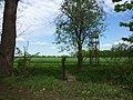 Feld bei Lustadt - geo.hlipp.de - 24748.jpg