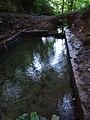 Ffynnon St Dyfnog - St Dyfnog's Well, Llanrhaeadr, Denbighshire, Wales 11.jpg