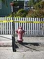 Fire Hydrant Ferndale CA.JPG