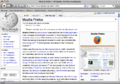 Firefox3macosx.png