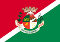 Flag of Baixo Guandu ES.png
