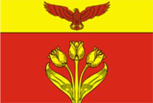 Pallasovka (town) - Image: Flag of Pallasovka (Volgograd oblast)