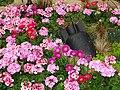 Flower Arrangement with Mock Unexploded Bomb - Victoria Square - Birmingham - England (28149565741).jpg
