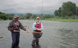 Arkansas River - Fly fishermen on the Arkansas River near Salida, Colorado