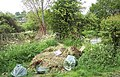 Flytip by the River Ebble - geograph.org.uk - 310865.jpg